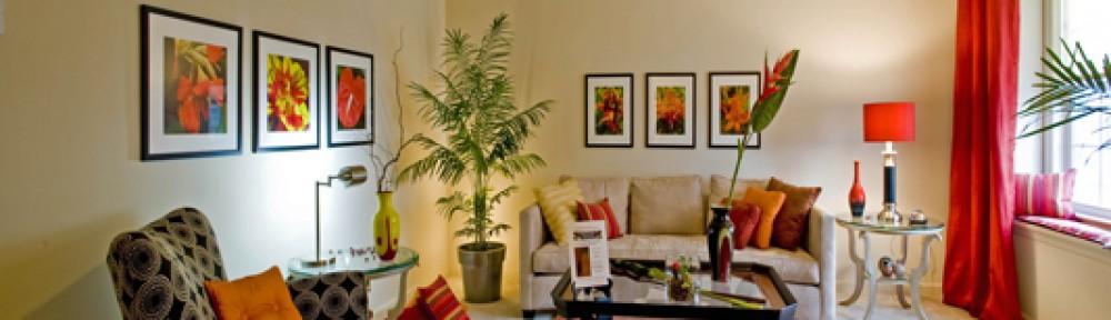 Pigura Foto | Pigura Lukisan | Pigura Kaligrafi | Bingkai Piagam | GROSIR PIGURA SURABAYA